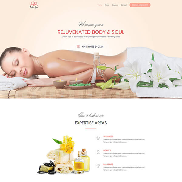 Web Design Chicago Illinois Spa Website Design Template 1